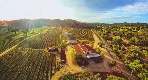 Paso Robles Wine Country Vacation Sweepstakes