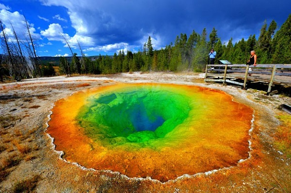 Yellowstone Park Vacation Sweepstakes