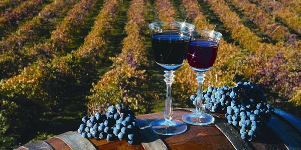 Wine Country Vacation Sweepstakes