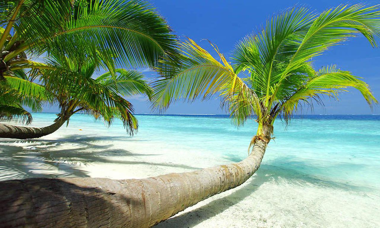 Jamaica Vacation Sweepstakes