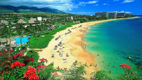Trip To Maui, Hawaii Giveaway