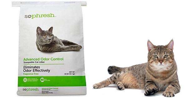 Petco – Free So Phresh Advanced Odor Control Cat Litter
