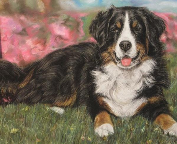 Handmade Pet Portrait Sweepstakes