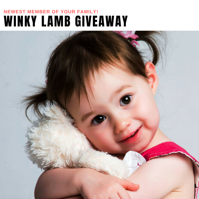 Winky Lamb Giveaway