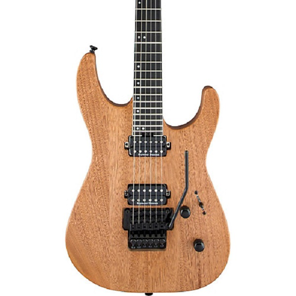 Pro-Series Electric Guitar Sweepstakes