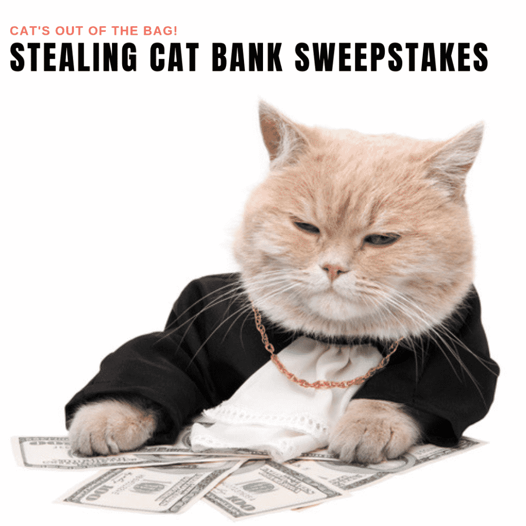 Stealing Cat Bank Giveaway