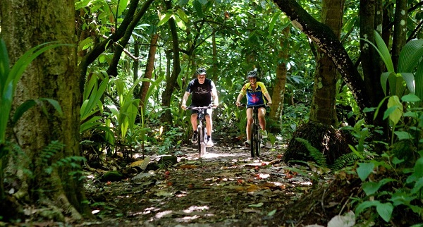 Caribbean Jungle Adventure in St. Lucia Sweepstakes
