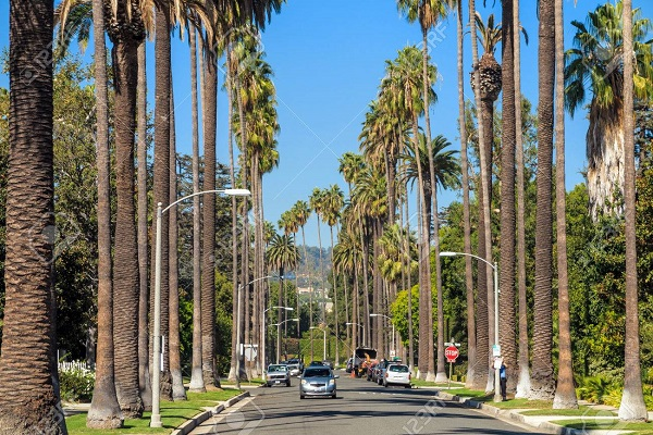 Trip for 2 to Beverly Hills, California Sweepstakes