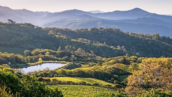 Trip for Two to Healdsburg, California Sweepstakes