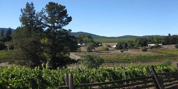 Mendocino Wine Country Getaway Sweepstakes
