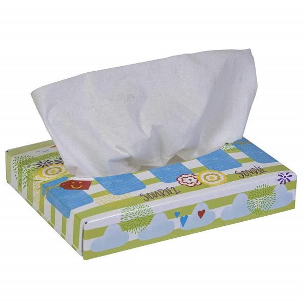 Free Box of Facial Tissue at Big Lots