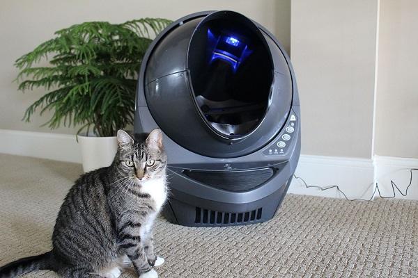 Robot Cat Litter Box Giveaway